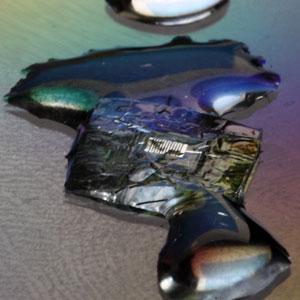 transient-electronicschip
