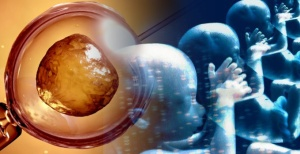 GMembryos