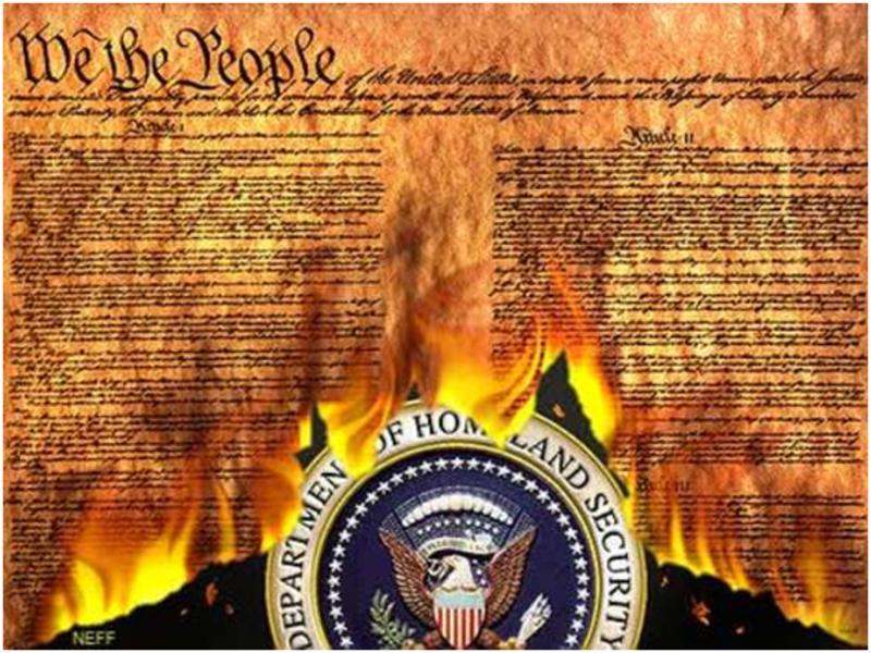 burning_constitution