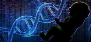 Genomeproject