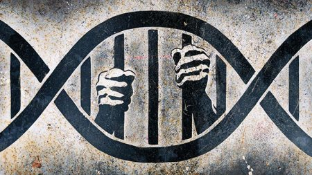 Genetic-Prison